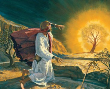 moses-and-the-burning-bush-0001107-full-640x400